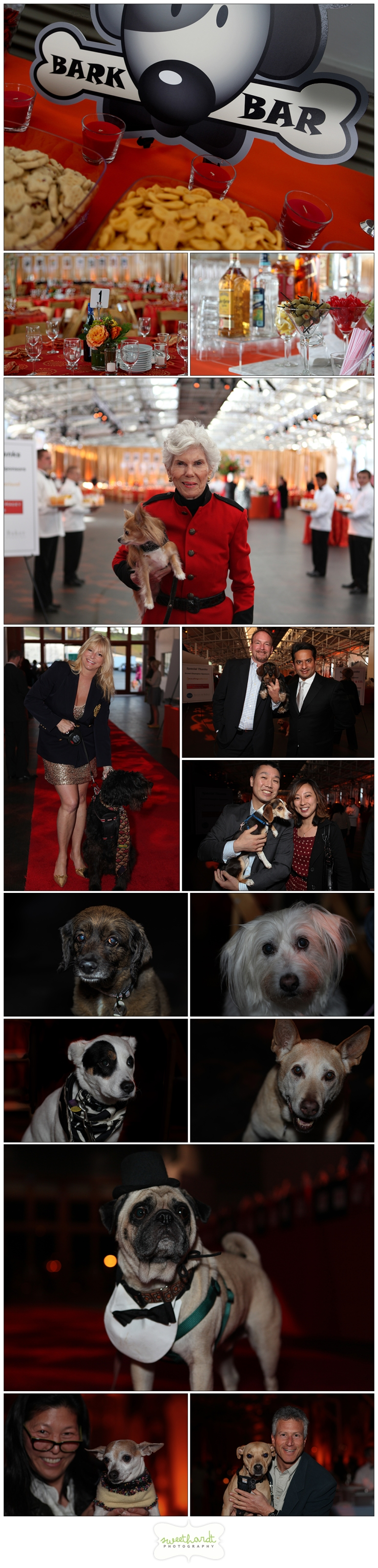 Bark & Whine Ball 2012